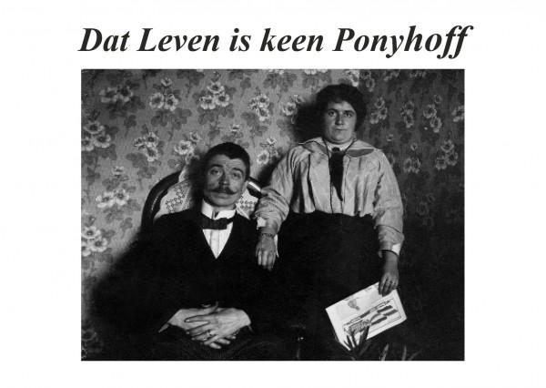 Postkarte - Düdenbüttel - Dat Leven is keen Ponyhoff