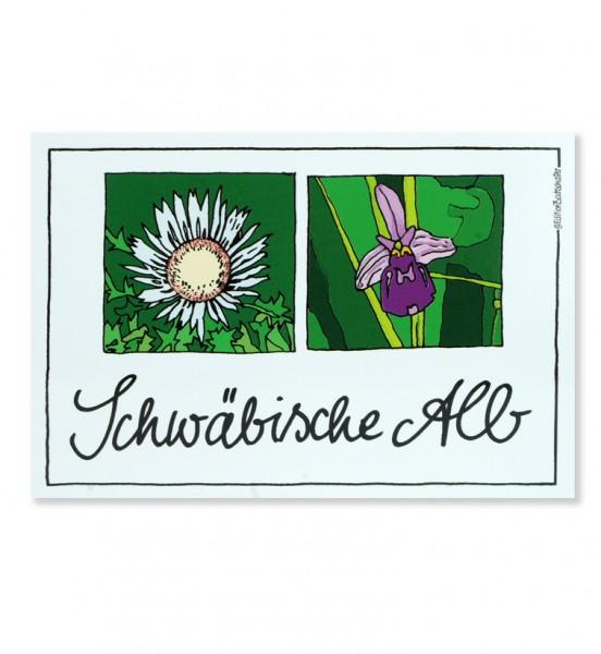 Postkarte - Schwäbische Alb - Silberdistel und Orchidee / Edition Bachschuster